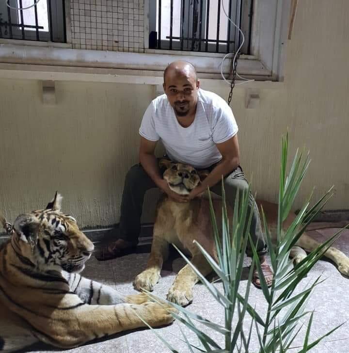 Abdulrahim al-Kani en train de poser avec ses deux tigres.