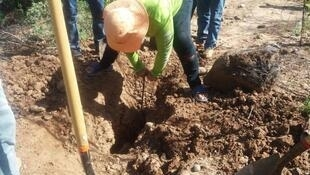 "Women insert instruments into the ground to help identify the places where human remains might be buried. (Photo posted on August 17 on the Facebook page ""Las Rastreadoras del Fuerte"".)"