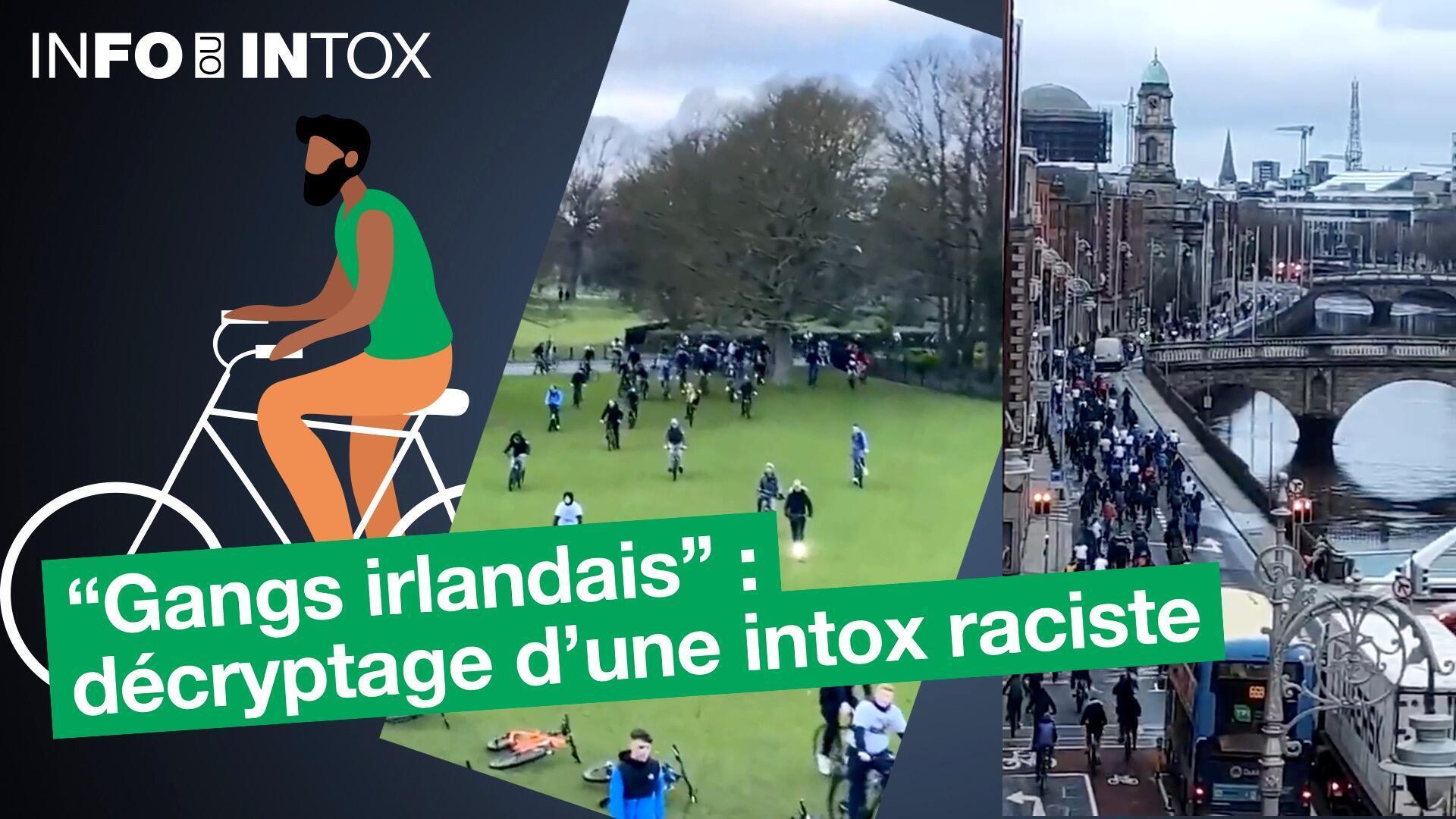 info-intox-irlande-vignette-video-1920x1080 copy