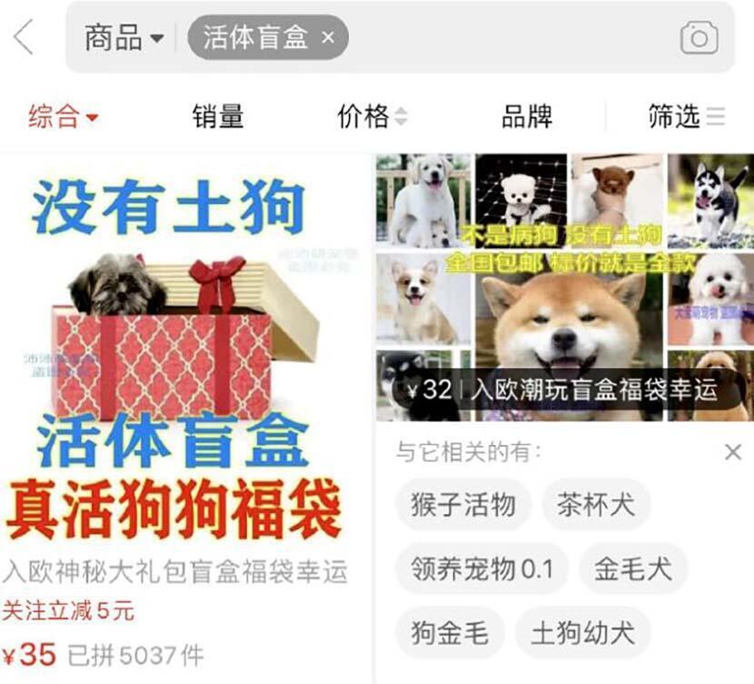 """Capture d'écran montrant une annonce de vente sur un site de commerce en ligne. Les animaux sont placés dans des """"colis surprises"""". Via @天眼新闻 sur Weibo."""