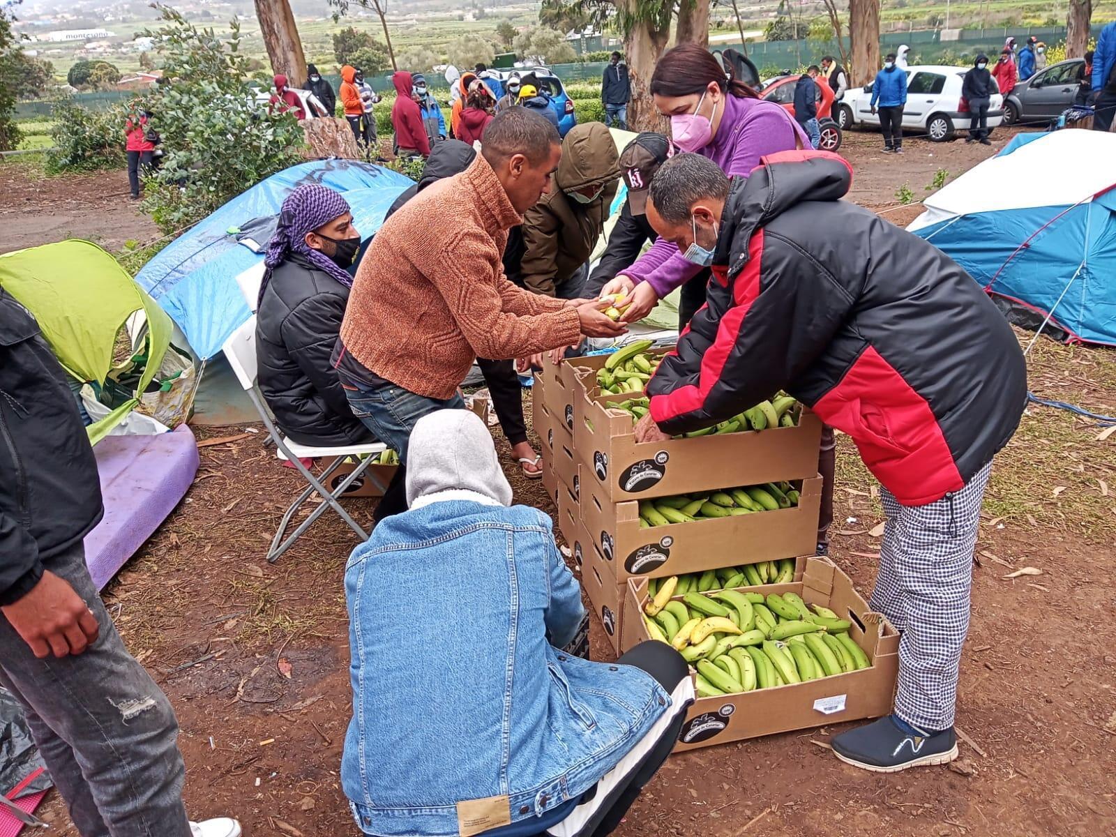 L'Assemblée d'aide aux migrants de Tenerife apporte de la nourriture aux migrants de Las Raices.