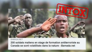 Plusieurs sites ont relayé une fausse information venant d'un site parodique à propos de la désertion de soldats maliens.