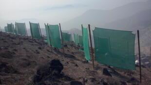 """Des """"capteurs de brouillard"""" dans le district Villa María del Triunfo, au sud de la capitale péruvienne. Photo envoyée par Abel Cruz Gutiérrez."""