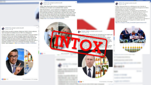 This montage shows fake posts on Facebook or WhatsApp by a disinformation network based in the Democratic Republic of Congo.