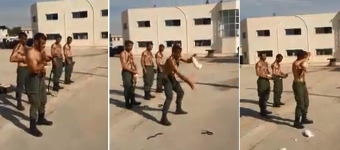 These screengrabs were taken from a gruesome video where Syrian police officers kill animals with their bare hands and, sometimes, teeth.