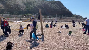 A large number of volunteers rushed to clean up beaches in southern Israel after an oil spill from an unidentified ship.