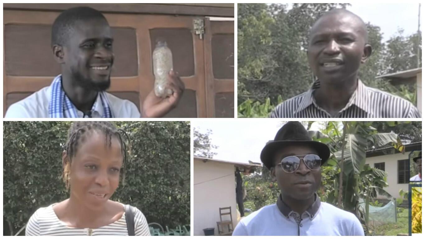 Ces Ivoiriens, chacun à leur manière, dévoilent de nouvelles techniques agricoles pour proposer une alternative aux OGM.