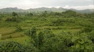 Nothing remains of Tula Toli. (Screengrab from a video published by Shafiur Rahman)
