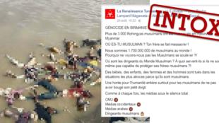 """Montage d'une publication de la page Facebook """"La Renaissance turque""""."""