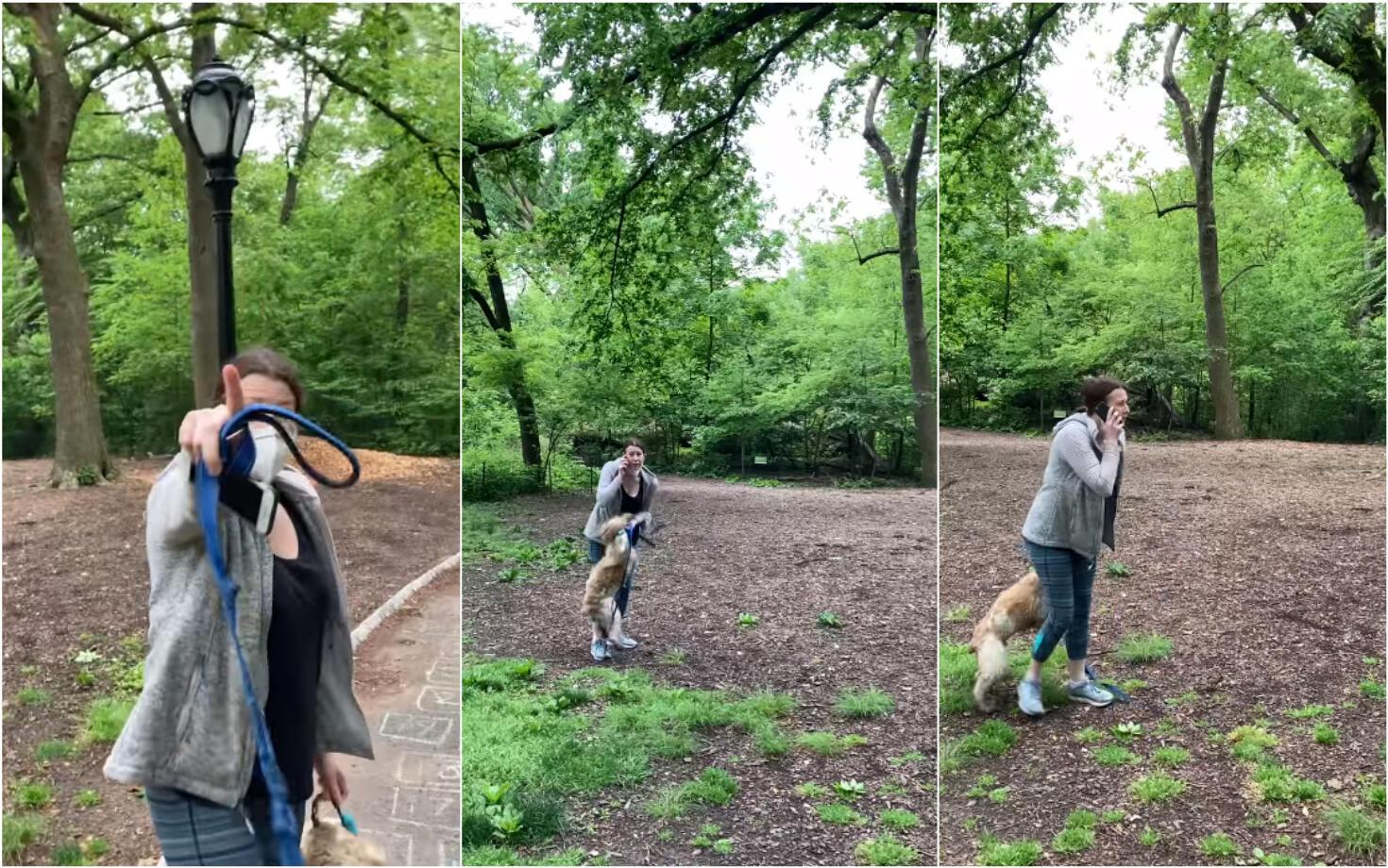 """""""أنا في حديقة سنترال بارك، رجل من أصل أفريقي يهدد حياتي وحياة كلبي"""" هكذا صاحت المرأة في الهاتف قبل أن تسترجع صوتها العادي بعد المكالمة. صورة شاشة من الفيديو الذي نشره كريستيان كوبر."""